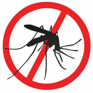 Уничтожение комаров, клещей. Обработка территорий от клещей и комаров. Борьба с клещами и комарами на дачном участке.